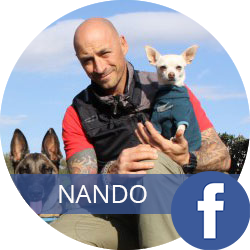 nando brown social link